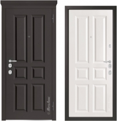 Металлическая дверь Металюкс  М1001/1 Е